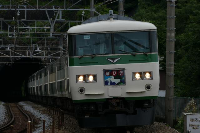 P6850590.JPG