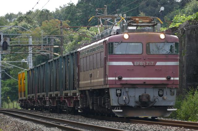 P6880735.JPG