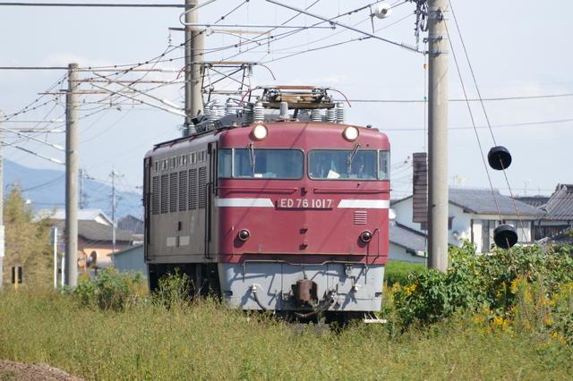 P6880957.JPG