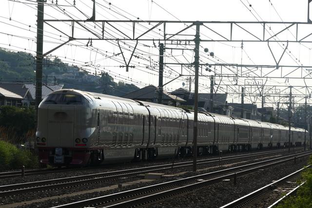 P6890636.JPG